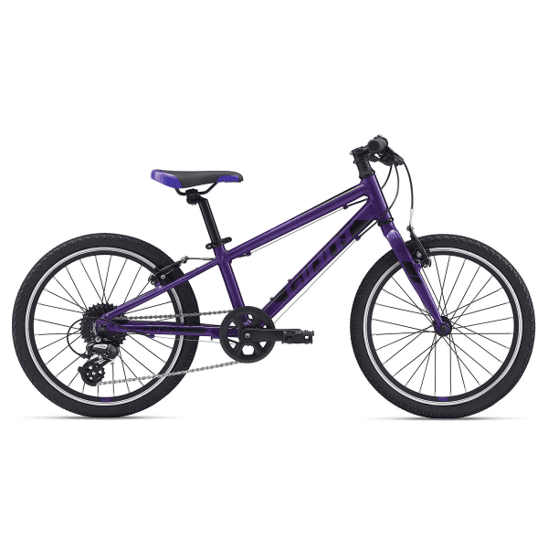ARX 20 Zoll - Purple
