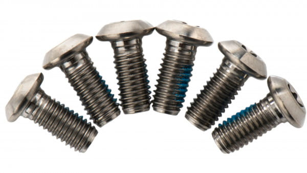 Titanschrauben für Bremsscheiben - silber